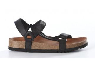 Scholl Heaven Sandal
