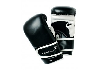Carite Boxing gloves