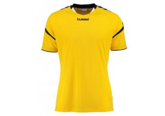 Hummel Authentic charge poly jersey (Junior)